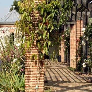 Jardines de estilo clásico por Giles Jollands Architect