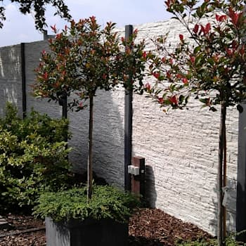 beton schutting: moderne Tuin door Kuiper Schuttingen