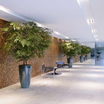 Paisajismo de interiores de estilo  por Svetlana Plantas Preservadas
