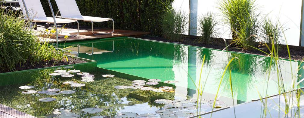 6 jardines modernos con piscina te van a encantar for Patios modernos con piscina