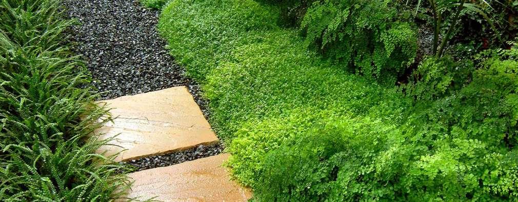 10 ideas para mantener tu jardin peque o sin gastar mucho - Decorar jardin con poco dinero ...