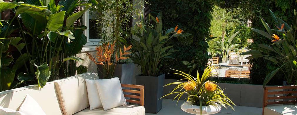 10 terrazas sencillas pero bonitas te van a encantar for Terrazas sencillas y bonitas
