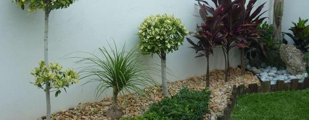 Jardines de estilo moderno por VIVERO CUMBRES ELITE