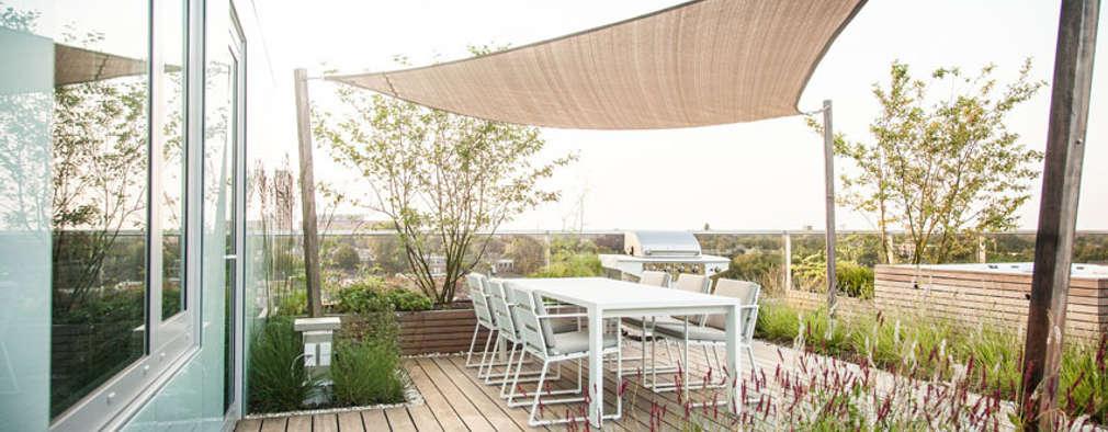 Toldos para jardines y terrazas precios y modelos - Precio toldos terraza ...
