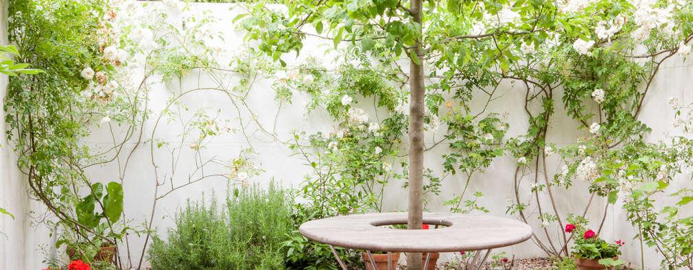 12 idee semplici per un piccolo giardino for Idee per il giardino piccolo