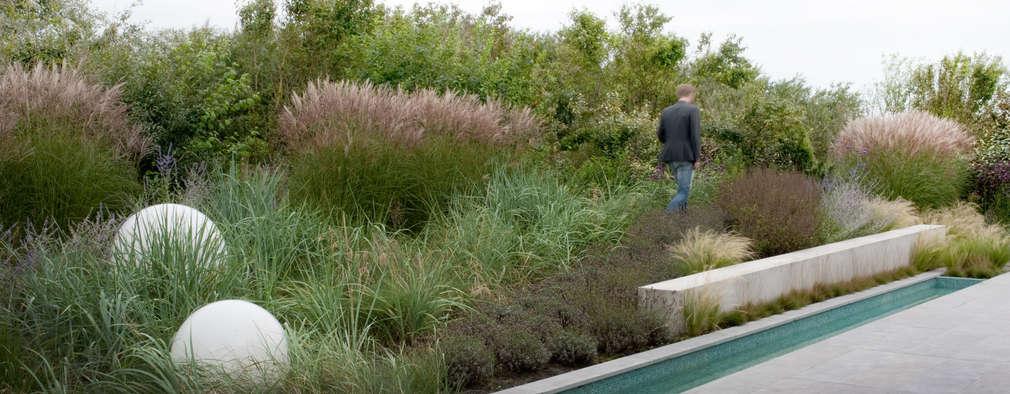 Natuurlijk overgang naar aangrenzend duinlandschap: moderne Tuin door Andrew van Egmond (ontwerp van tuin en landschap)