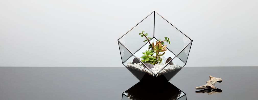 The Urban Botanistが手掛けたリビングルーム