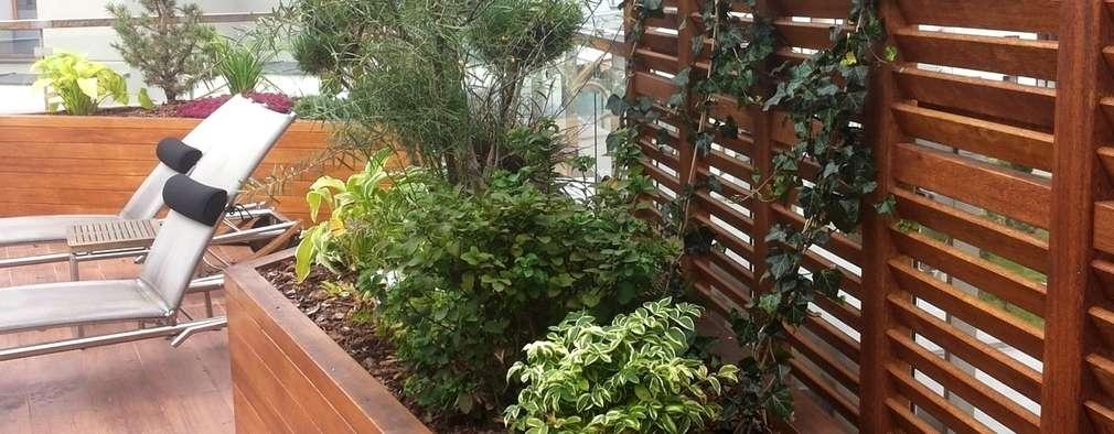Jardin de style de style Colonial par GREENERIA