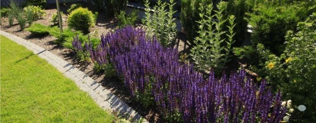 de estilo  por Sungarden - Projektowanie i urządzanie ogrodów