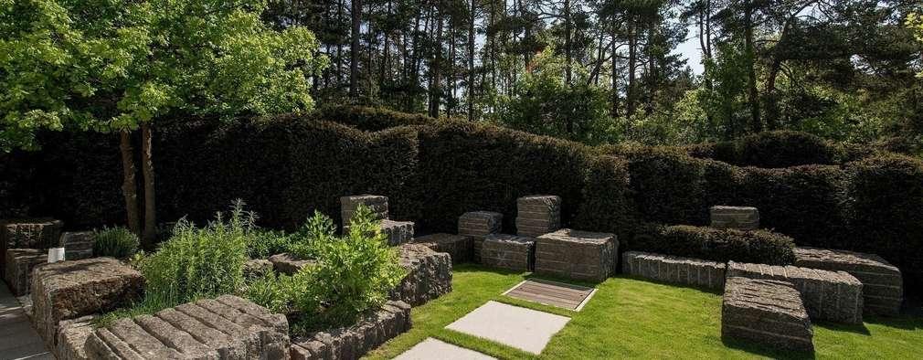 Jardines de estilo moderno por Naturform Japangärten & Koiteichbau