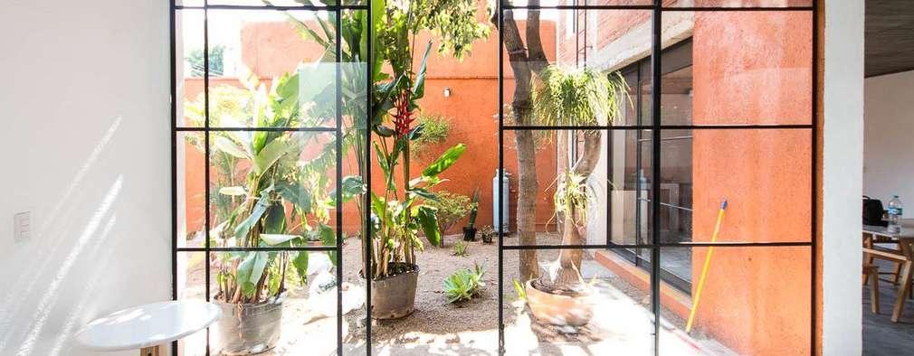 Jardines de estilo minimalista por rOOtstudio