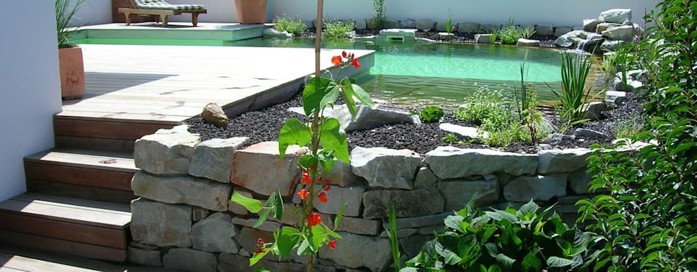 Avant Apr S Un Beau Petit Jardin Avec Piscine