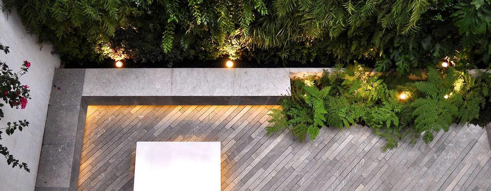 DF ARQUITECTOS: modern tarz Bahçe