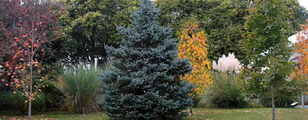 MARIELA DURA ARQUITECTURA PAISAJISTA: klasik tarz tarz Bahçe