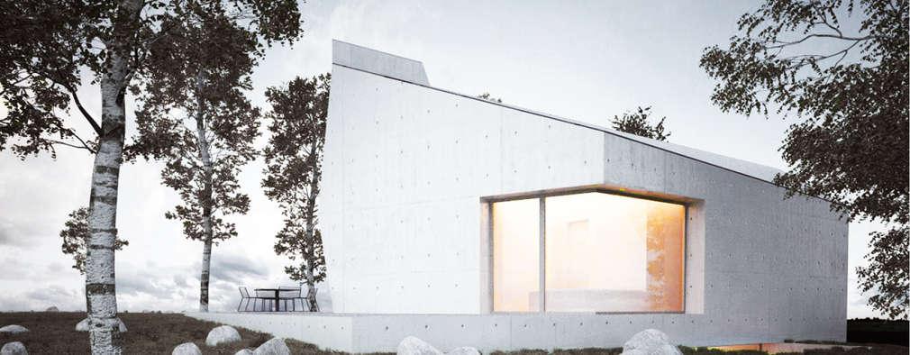 Ausdrucksstarkes wohnhaus mit markanter note for Minimalismus haus tour