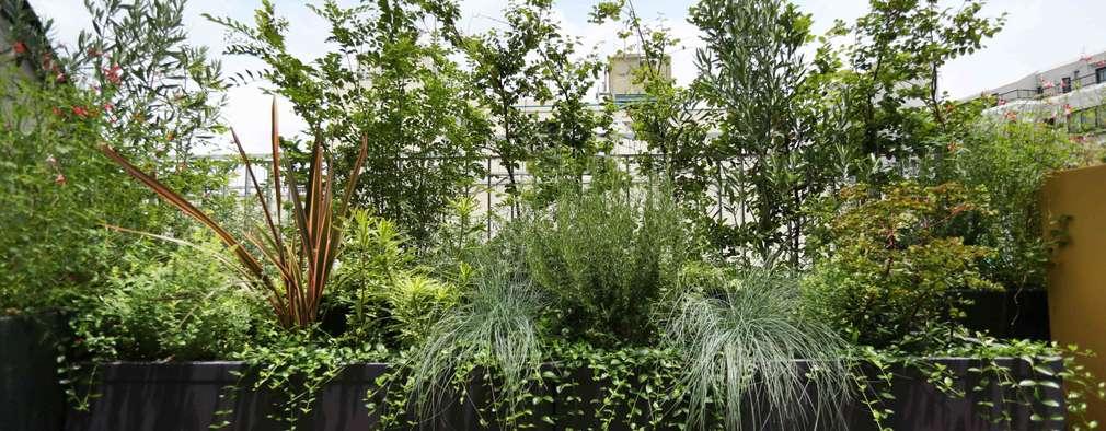 庭院 by SUNIHA UNIHA(サニハユニハ)