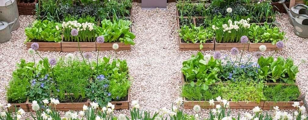 17 klein tuine wat by enige huis sal pas for Klein tuin uitleg