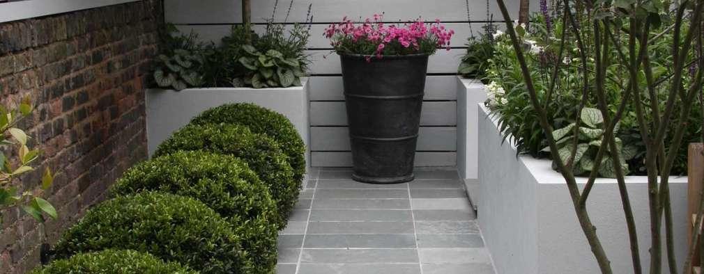 Jardines de estilo moderno por Ruth Willmott