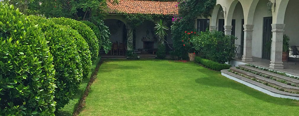 Jardin Principal: Jardines de estilo clásico por Terra