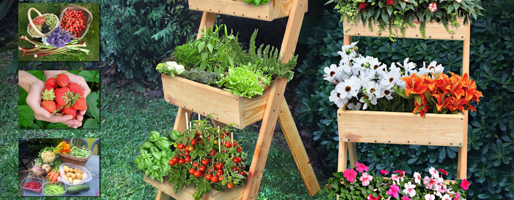 Projekty,   zaprojektowane przez Mundo Garden