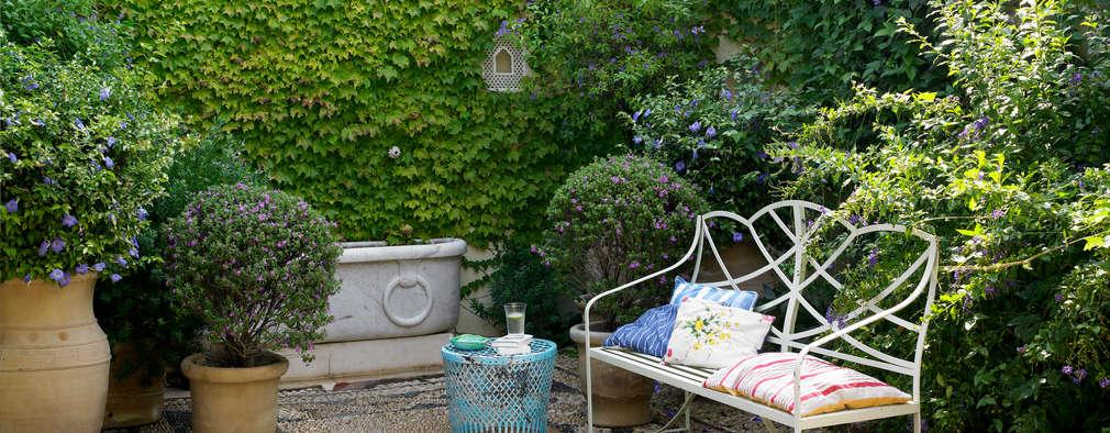 modern Garden by Melian Randolph