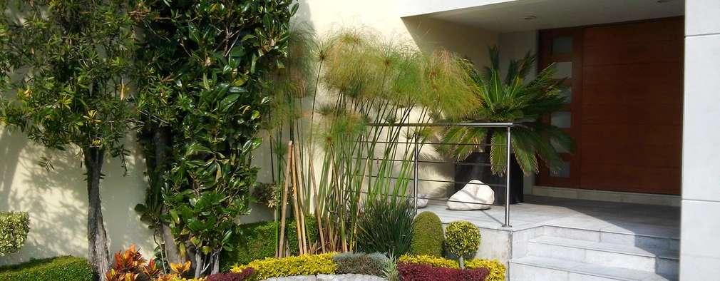 Jardines De Estilo Moderno Por Diseno De Interiores Y Asesoria