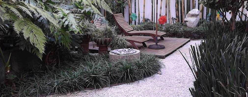 Projekty,  Ogród zaprojektowane przez CAXÁ studio