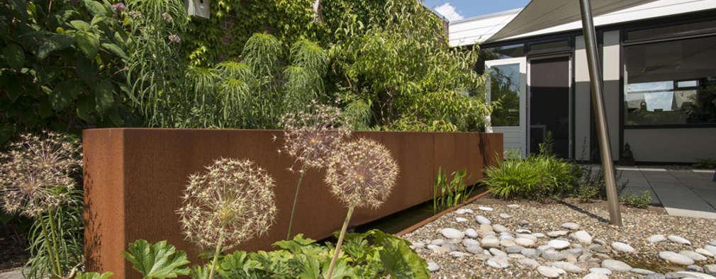 Genoeg 10 geweldige ideeën die je tuin groter doen lijken &LX95