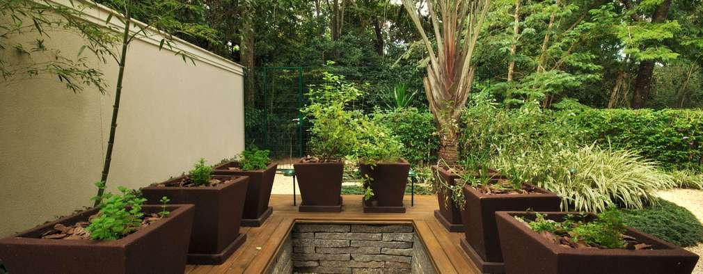 Tropischer Garten Von Alexandre Galhego Paisagismo