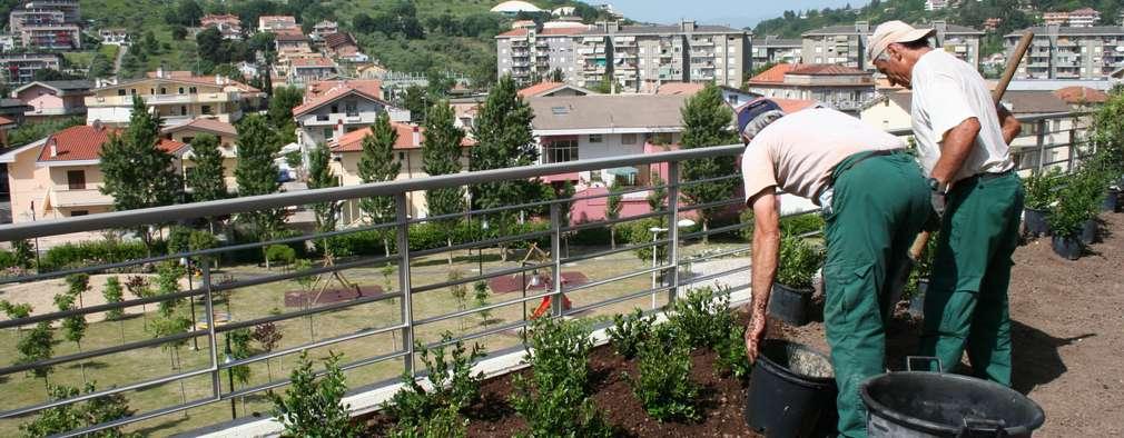 Dal Nulla hanno Creato uno Splendido Giardino sul Terrazzo a Pescara