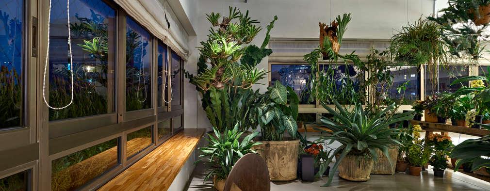 minimalistic Conservatory by Piratininga Arquitetos Associados