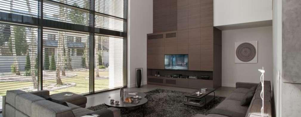 LK&1048 salon: styl , w kategorii Salon zaprojektowany przez LK & Projekt Sp. z o.o.