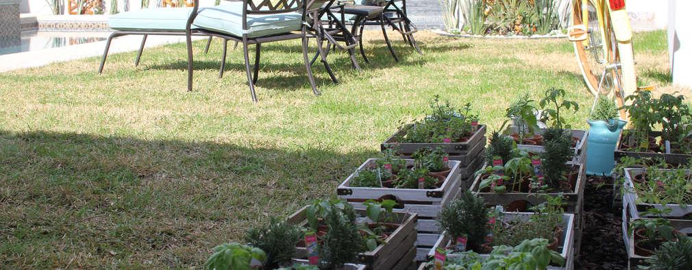 Günstige Gartengestaltung: Lass' Dir Diese 10 Vorschläge Nicht ... Gunstige Gartengestaltung