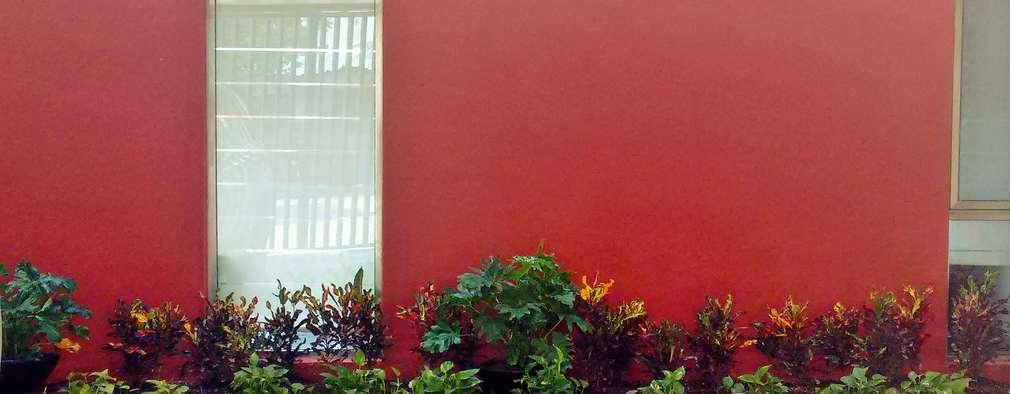 5 small home gardens for you to copy for Paisajismo urbano