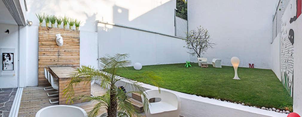 Grandi piccoli giardini for Piani di casa con spazio di vita all aperto