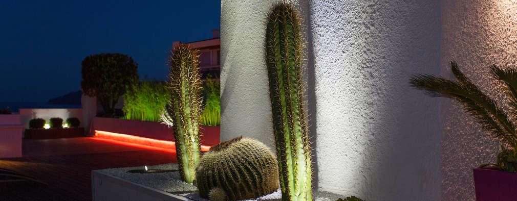 25 piccoli giardini per l 39 ingresso di casa che vi faranno - Piccoli giardini di casa ...