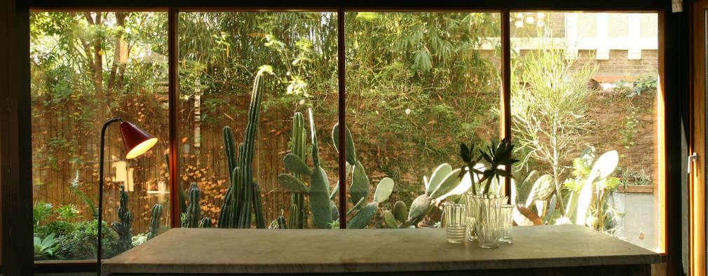 Arquitecto Alejandro Sticotti: kırsal tarz tarz Kış Bahçesi
