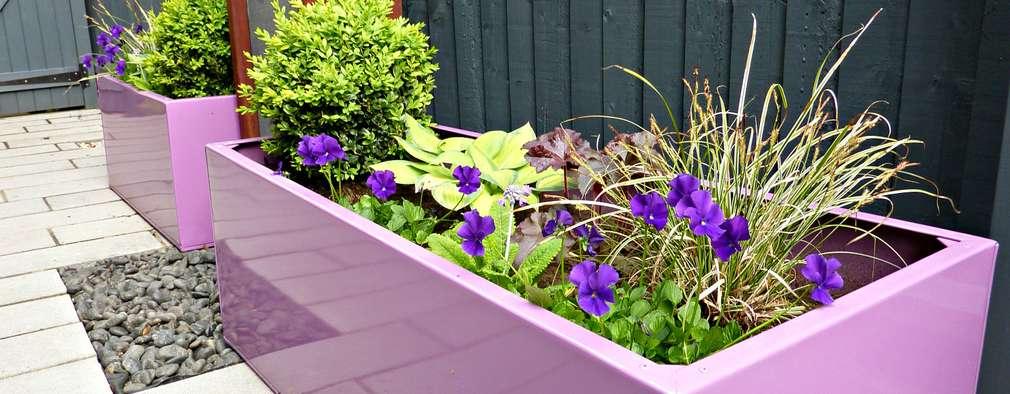 Bespoke, galvanised powder coated planters : modern Garden by Gardenplan Design