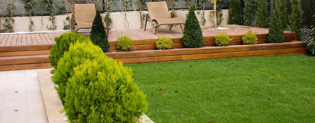 Jardines de estilo moderno por avidra