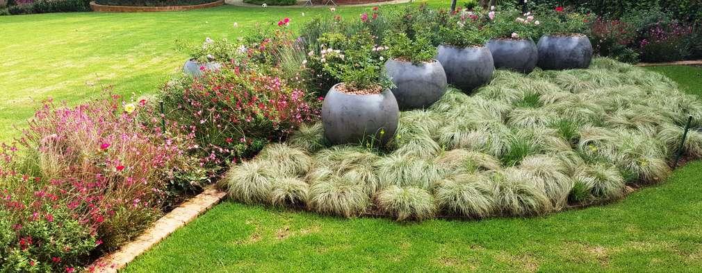 Jardines de estilo moderno por Gorgeous Gardens
