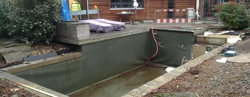 Construyeron una piscina de acero inoxidable en el jard n for Fabricacion de piscinas