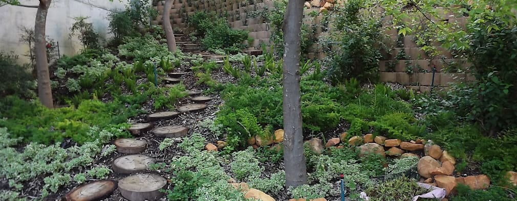 by Peninsula Landscaping