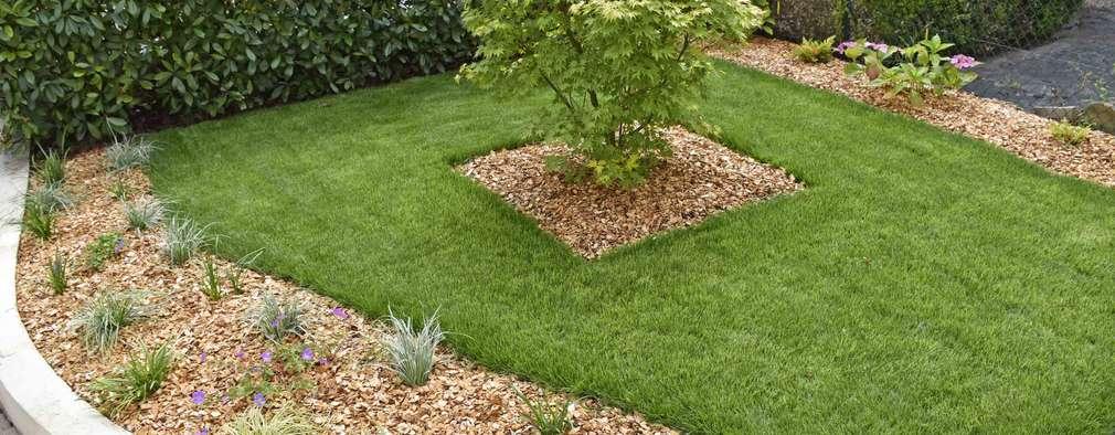 15 jardines bonitos y sencillos que te van a encantar for Modelos de jardines sencillos