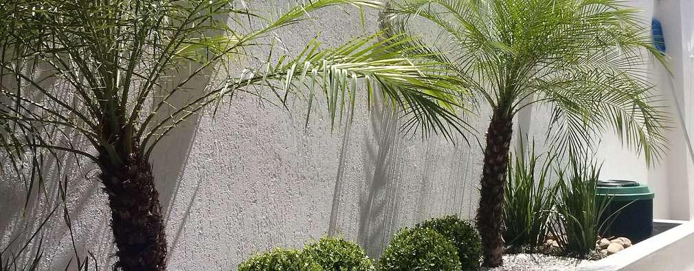 Jardines de estilo topical por Mateus Motta Paisagismo