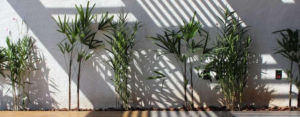 Jardines de estilo moderno por Cornetta Arquitetura