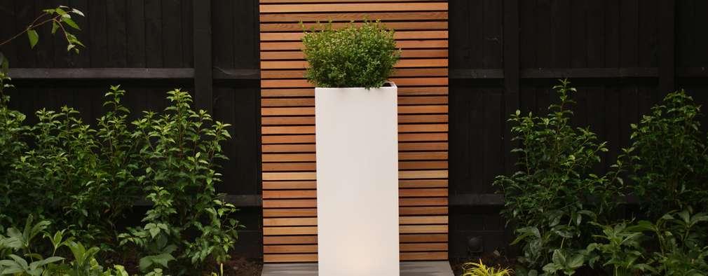 Projekty,  Ogród zaprojektowane przez Hannah Collins Garden Design