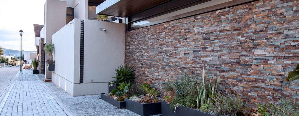 28 jardines para pasillos y entradas que debes ver en for Jardines en piedra natural
