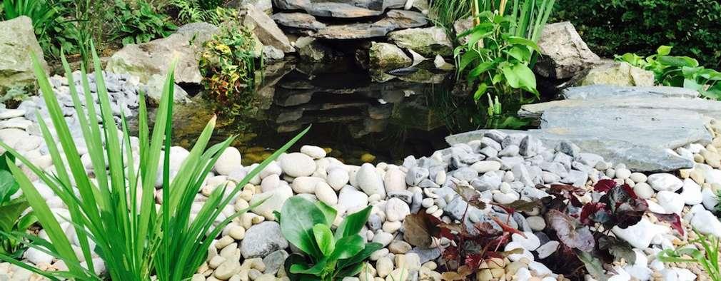 classic Garden by Garden Ninja Ltd