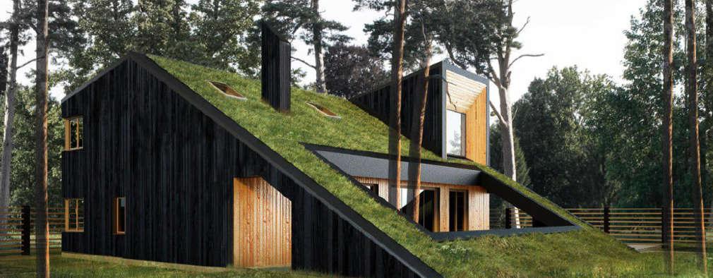 Projekty, minimalistyczne Domy zaprojektowane przez Snegiri Architects