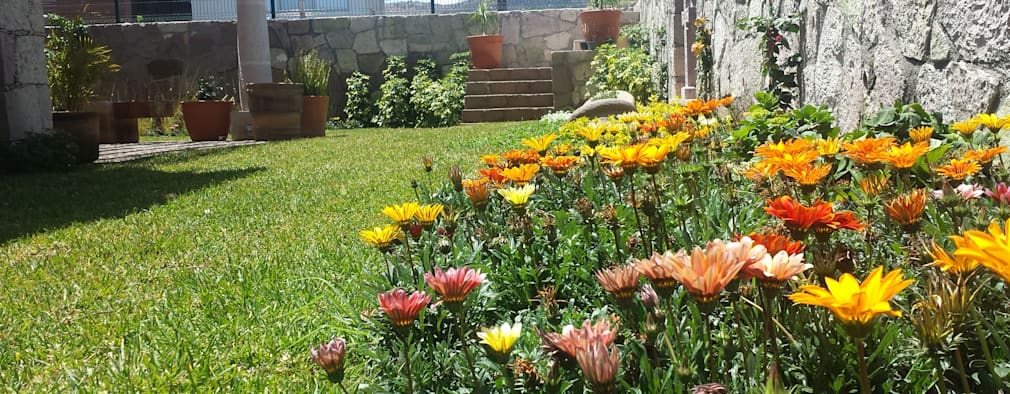 Сады в . Автор – SCH2laap arquitectura + paisajismo